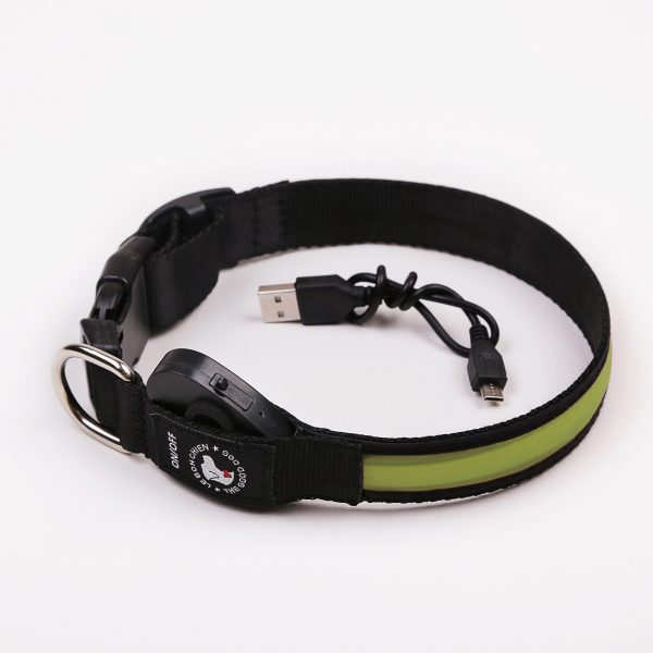 Bright Green LED collar for dogs - The Good Dog