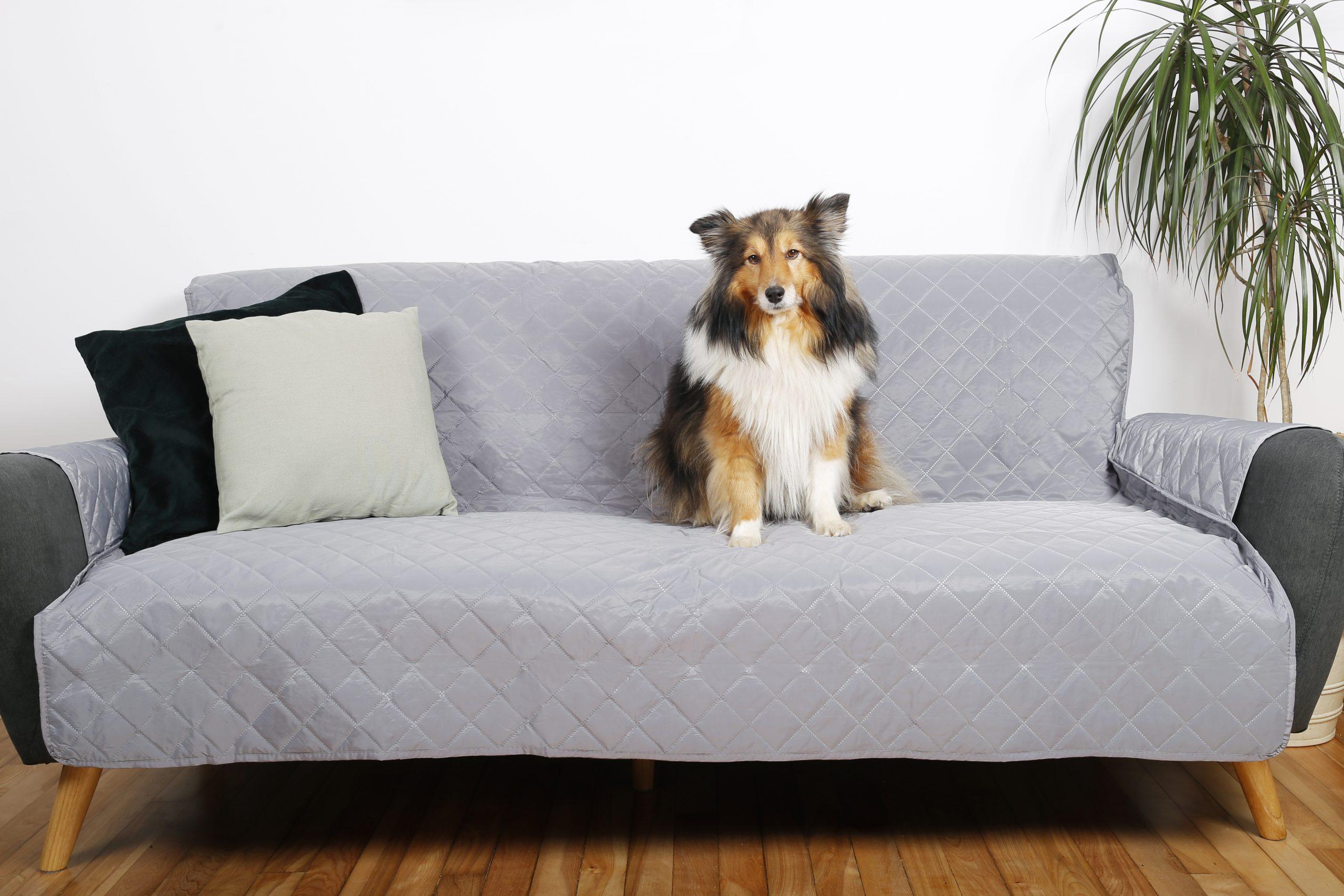 Housse de sofa Le Bon Chien